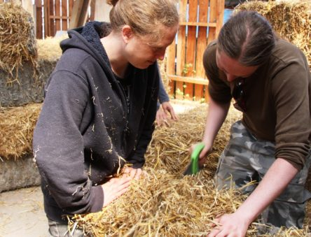 Building with Straw Bale