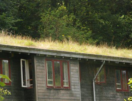 Eco Cabin